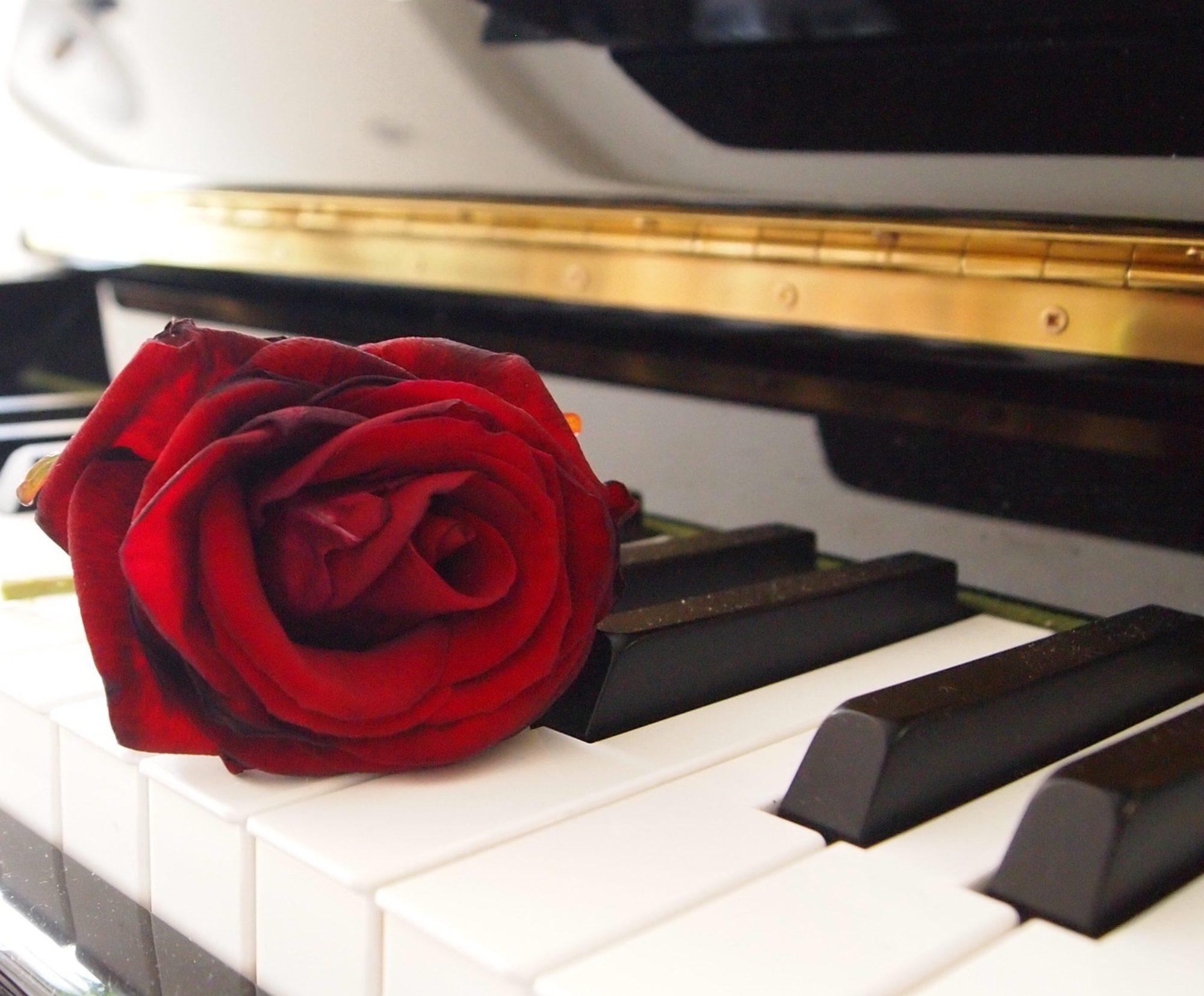 Piano Amore